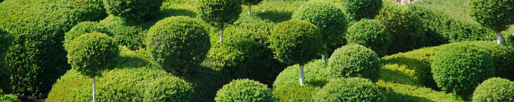 Périgord Noir Parcs et Jardins